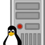 Linux penguin in front of server